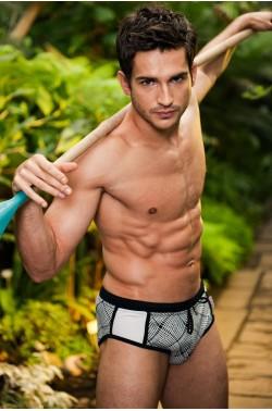 Alpha Male Brevo check beachwear trunks